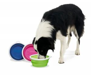 bamboo-pet-dog-bowls