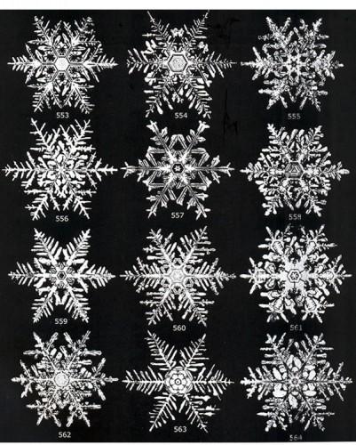 SNOWFLAKE PAGE