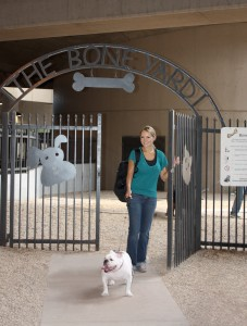 PHX pet relief area