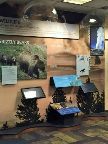 9_Exhibits at Bozeman Yellowstone International Airport educate travelers about wildlfie they might see in Yellowstone Park_courtesy of the airport.