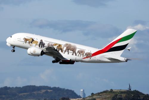 Emirates wildlife plane